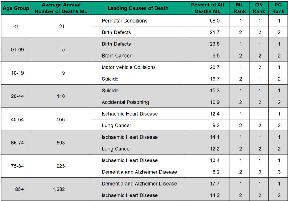 Figure 3.4.3 Leading causes of death - top two - by age group
